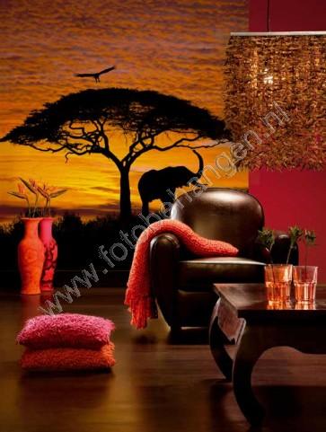 Fotobehang African sunset