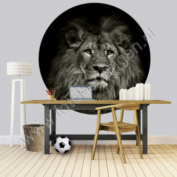 Behangcirkel Leeuw