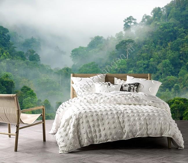 Fotobehang Meerdere Fotos.Vlies Fotobehang Regenwoud In De Mist Fotobehangen Nl
