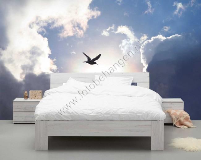 Fotobehang In Slaapkamer : Vlies fotobehang vogel in de wolken fotobehangen