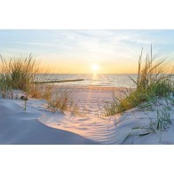 Vlies fotobehang Zonsondergang in de duinen