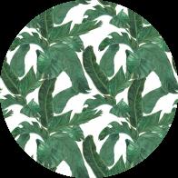 Behangcirkel Bladeren