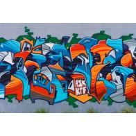 Vlies fotobehang straatkunst muur