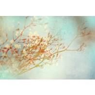 Vlies fotobehang Vintage bloemen