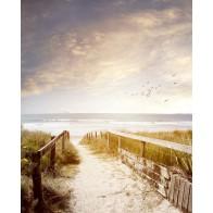 Vlies fotobehang Pad naar het strand Vintage