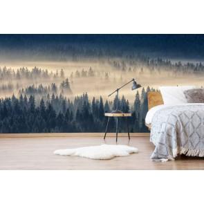fotobehang Naaldbos in de mist