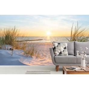 fotobehang Zonsondergang in de duinen