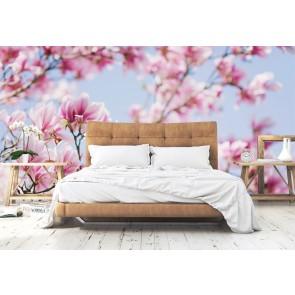 Vlies fotobehang Magnolia