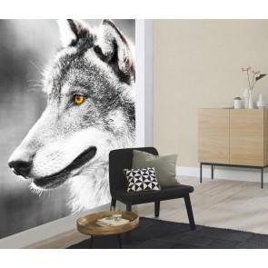 Fotobehang wolf