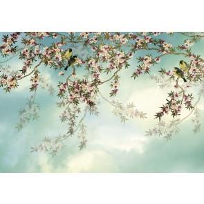 Fotobehang Sakura