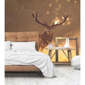 fotobehang Hert in het ochtendlicht