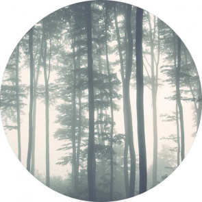 Behangcirkel Bomen