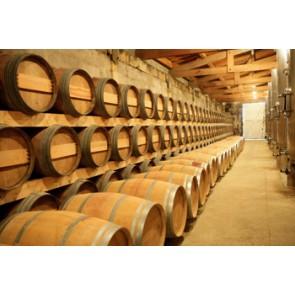 Vlies fotobehang Kelder met wijnvaten