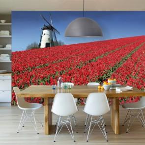 Tulpenlandschap met een molen