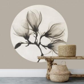 Behangcirkel Magnolia