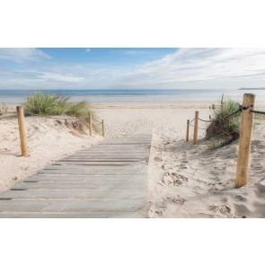 Vlies fotobehang Wandeling op het strand