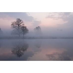 Vlies fotobehang Meer in de mist