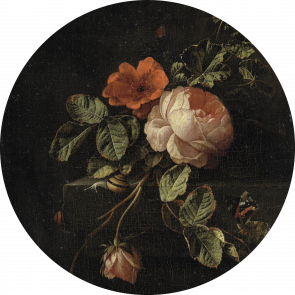 Behangcirkel Stilleven rozen