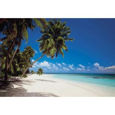 Fotobehang Maledives